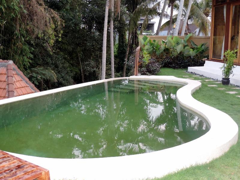 2 Bedrooms Villa With Pool in Batukurung Ubud, holiday rental in Singakerta