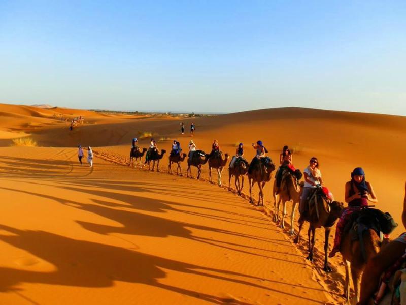 Le Moda Camp est situé à Hassi Labied, à 5 km de Merzouga et à 1 km des dunes de l'erg Chebbi.