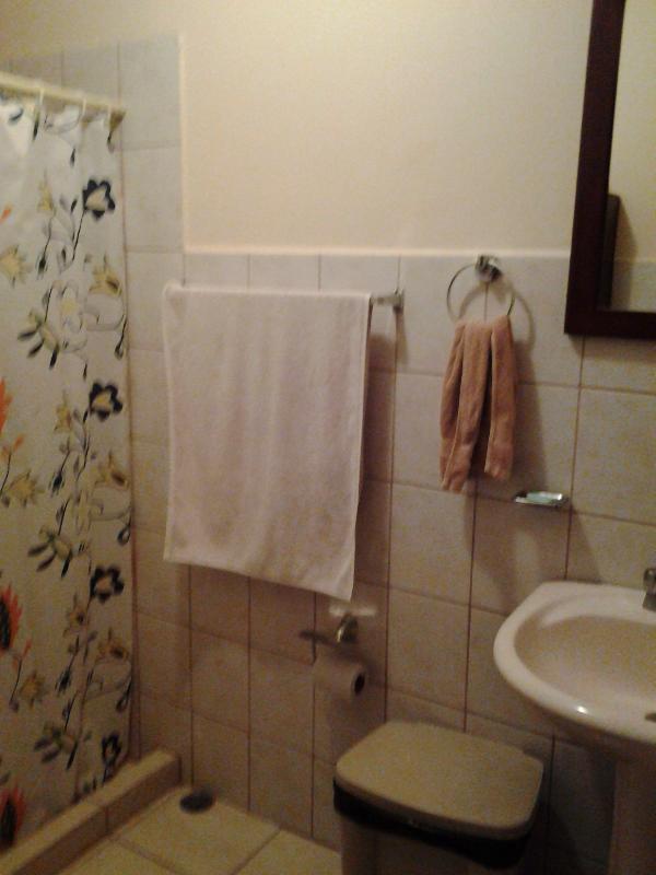 Gran tamaño ducha en cuarto de baño