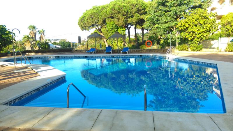 The pool in the early morning