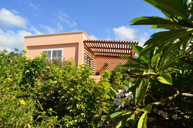 DHARMA HOUSE, holiday rental in Alcala