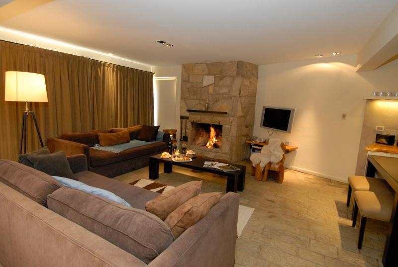 Living area for 12 guests.  Open fireplace and two huge sofa beds.  Wifi internet and open kitchen