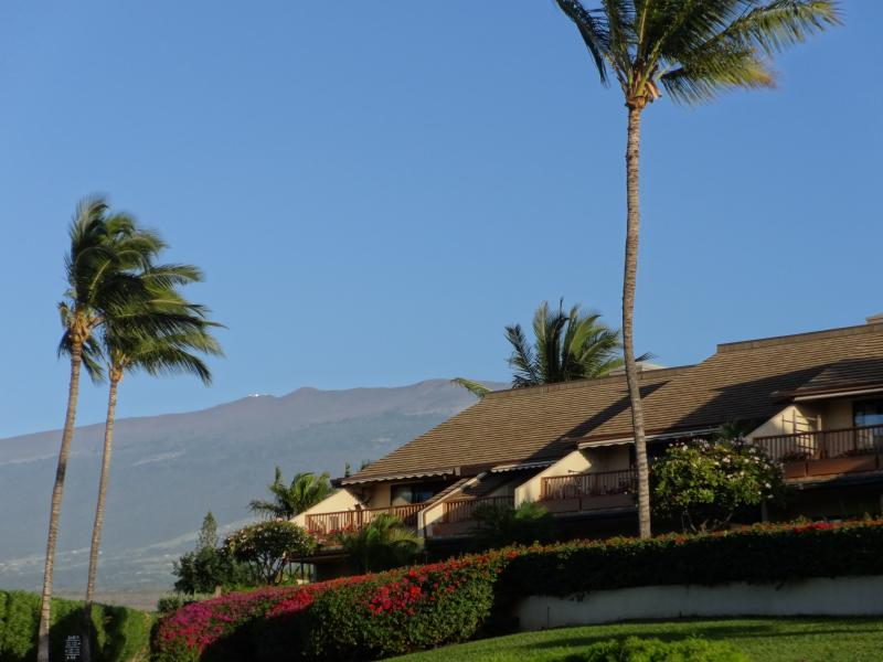 Wonderful views of the slopes of Haleakala from the grounds of Maui Kamaole