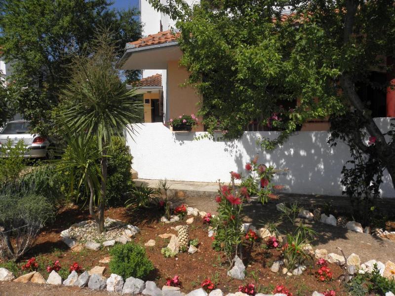 garden (house and surroundings)