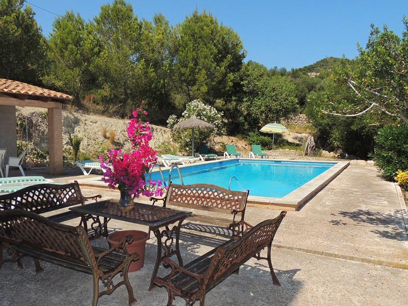 Ses Oliveretes - Pool area