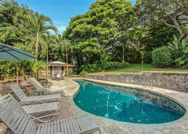 Private Pool with Lush Tropical Surroundings