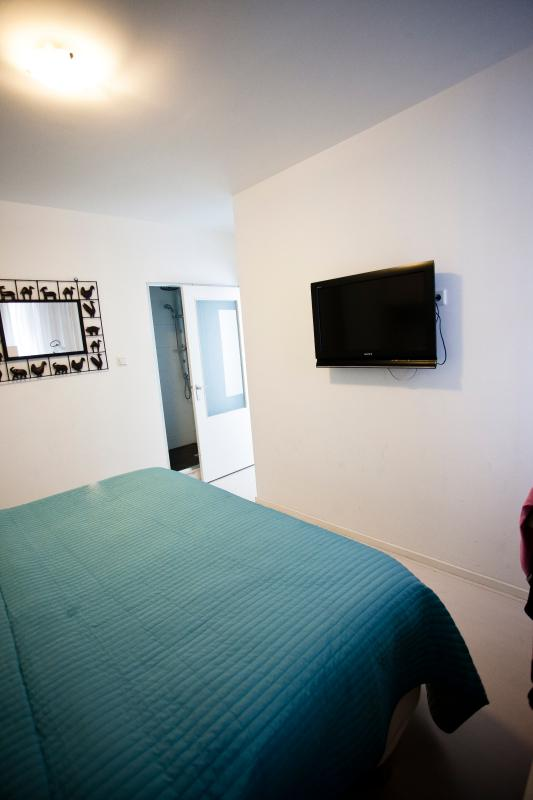 1st bedroom, the master bedroom ! With private shower! And flatscreen tv.