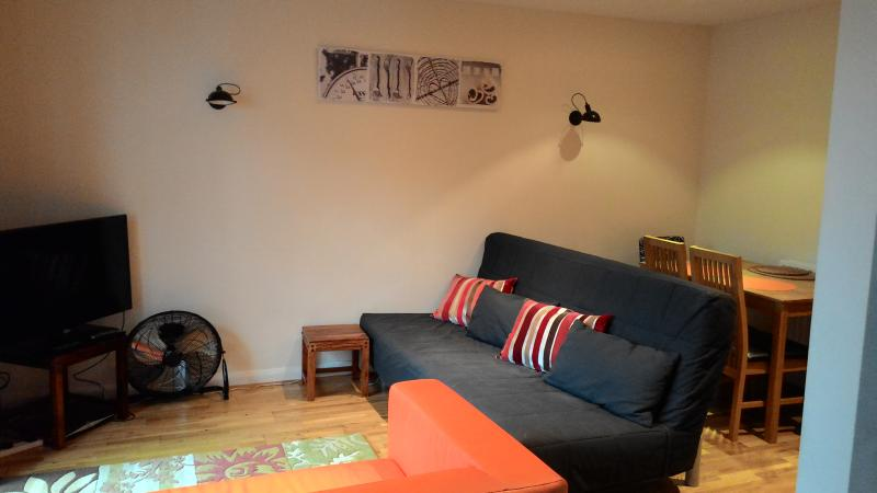 The living room, with a double sofa bed.