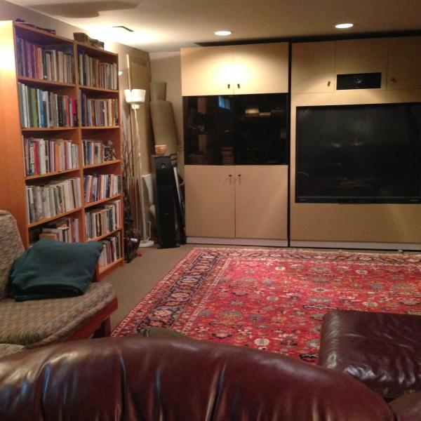 Library and Movie Room