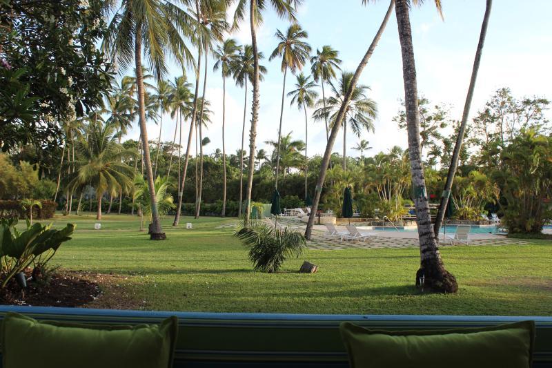 Vista a la piscina, amplios jardines