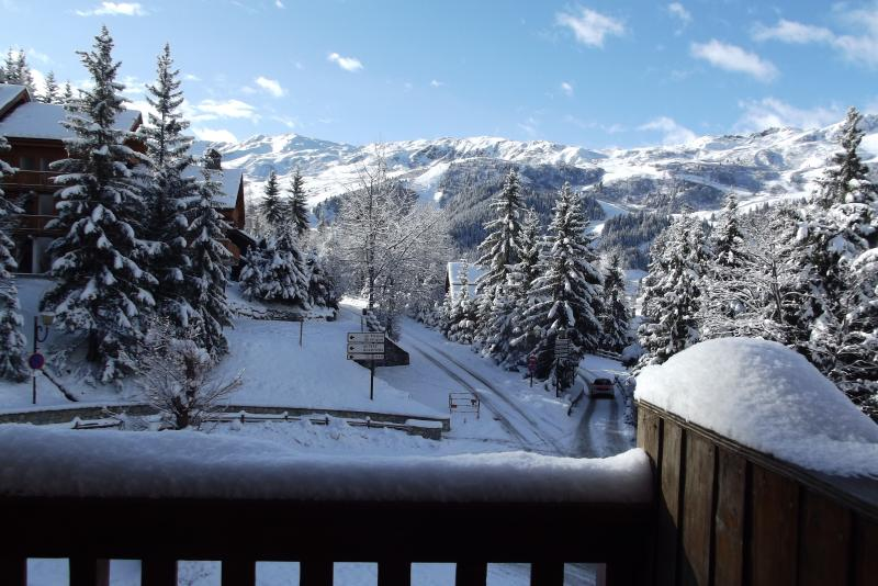 C3 La Vizelle, Quartier 1600, Meribel Centre, holiday rental in Meribel