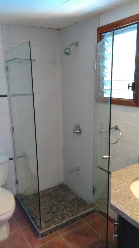 New guest bath shower