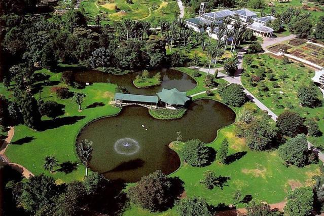 Make very nice PHOTOS here, Botanical Garden is 20 minutes by taxi from the apartment