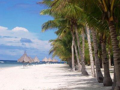 only 5 km away from bohol homes is our famous 3km long white beach located