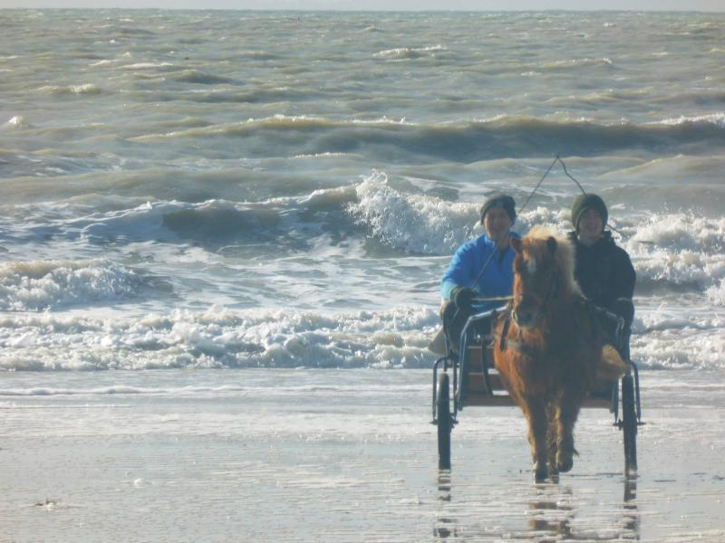 with our pony Appollon at the beach
