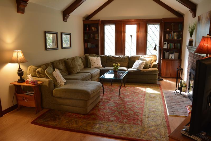 Muy amplio salón con un montón de asientos, una chimenea, TV y construido en cajas de libro