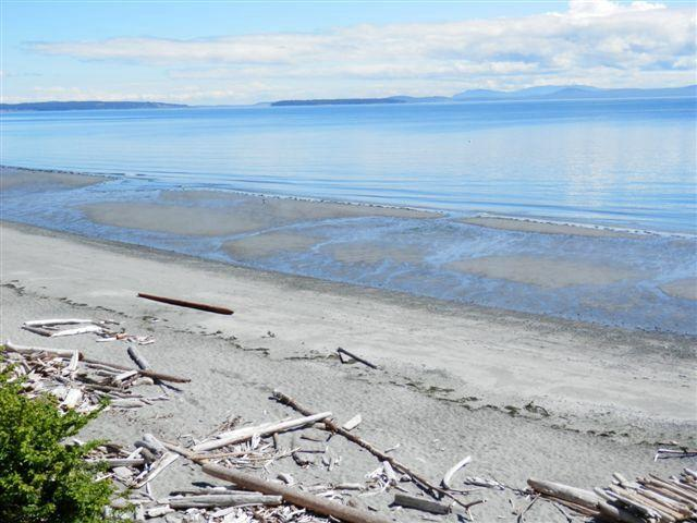 Cordova Bay Beach 300 meters from suite