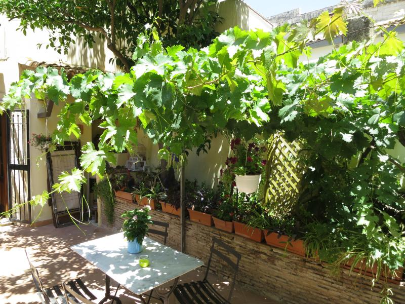 Typical private courtyard only for our guests.. Access from the Kitchen