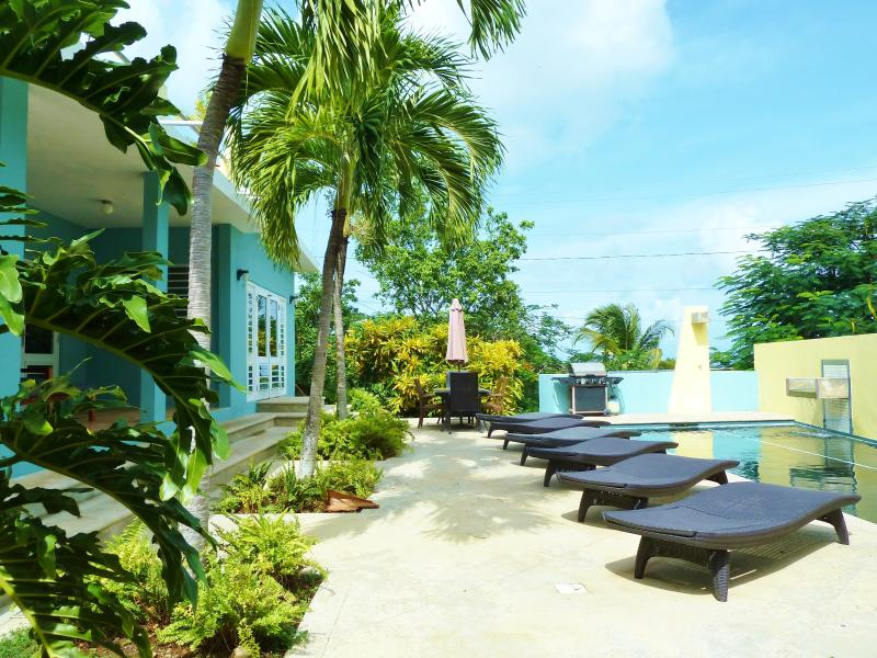 Welcome to Casa Tolteca!
