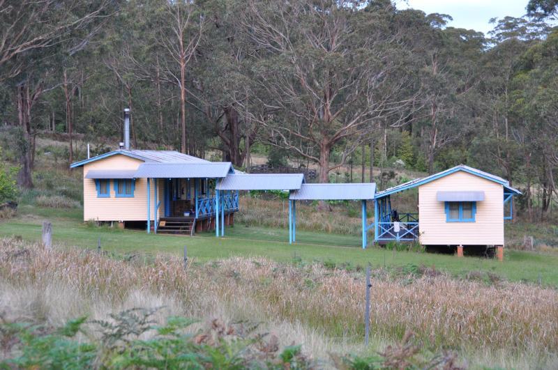 Callicoma Hill Eco-cabina, in un ambiente tranquillo bosco