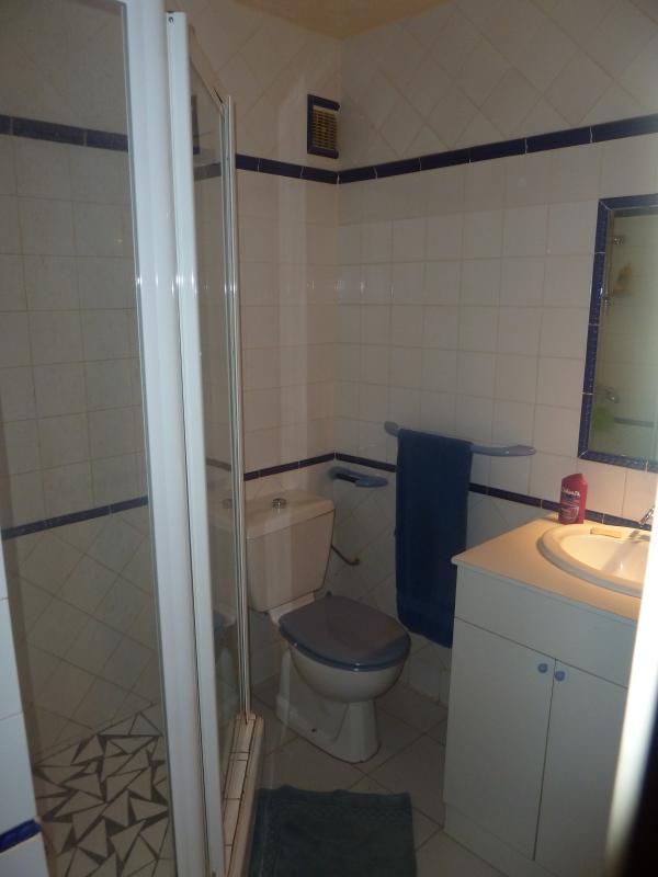 salle de bains N°2: douches, lavabo et wc