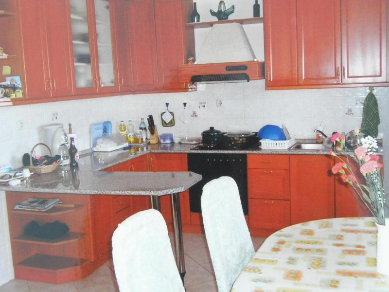 A1(6+2) VELIKI: kitchen and dining room