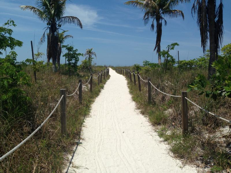 Beach Path like no other! Pure undeveloped tropics!