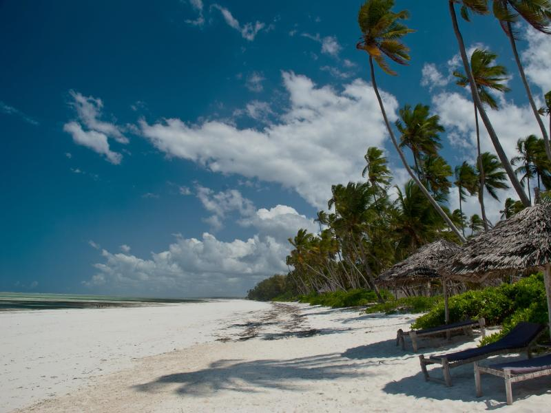 Indian Ocean barefoot beach house, water's edge, Chef, pool, wifi, vacation rental in Zanzibar Island