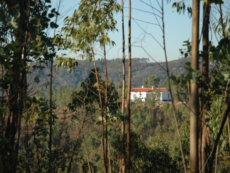 Monte do Casarão: Casa Boa op je eigen berg., vacation rental in Odemira