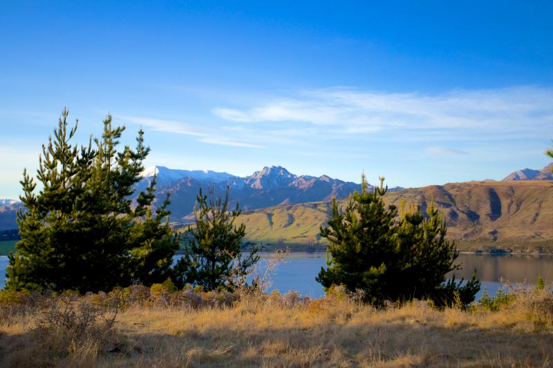 The view from our Mt Gold site is spectacular, offering 180degree views of Lake Wanaka. Soak it in.