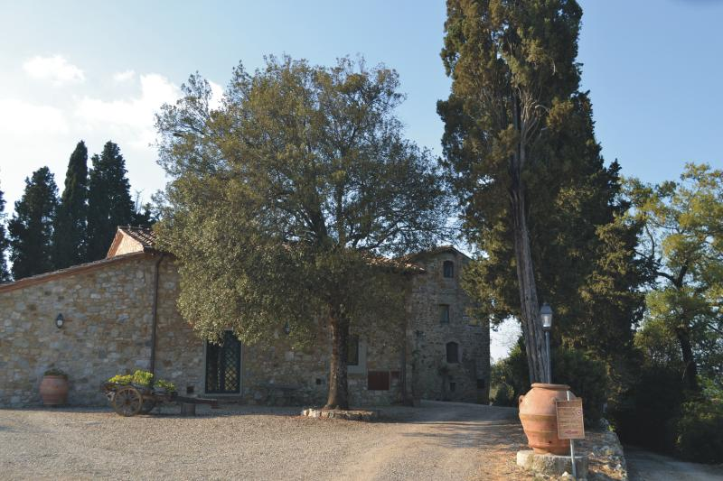 romantic house in chianti inside a medioeval tower, holiday rental in Strada in Chianti