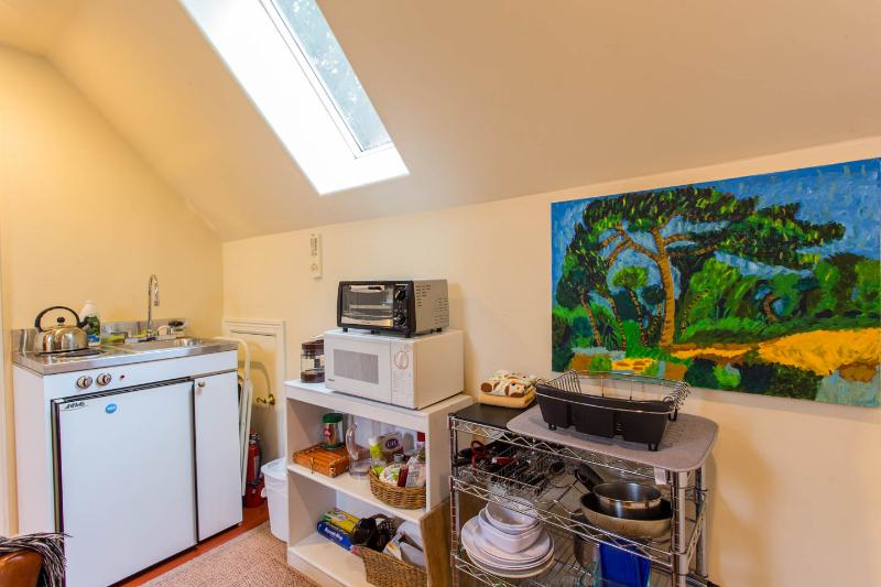 Mini kitchen with toaster oven, microwave, 2 burner stove, fridge and sink.