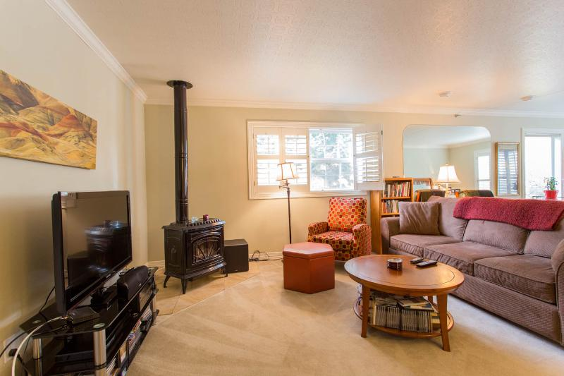 HDTV, sofa and stove