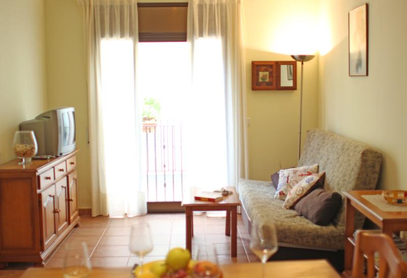 Beautiful apartment near the beach, vacation rental in Lloret de Mar