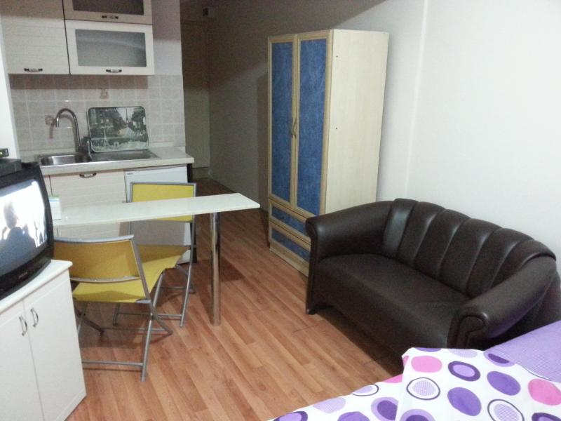 Studio apartment, Bed, Leather sofa, Satellite/cable Tv, Wifi, American Kitchen, Bar style table,