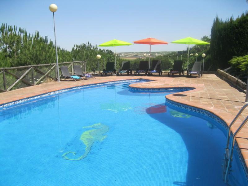Large swimming pool. 15 metres x 6 metres.