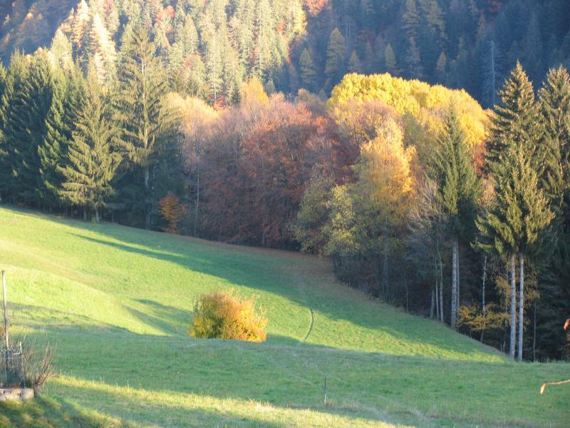 vista dalla casa, in autunno
