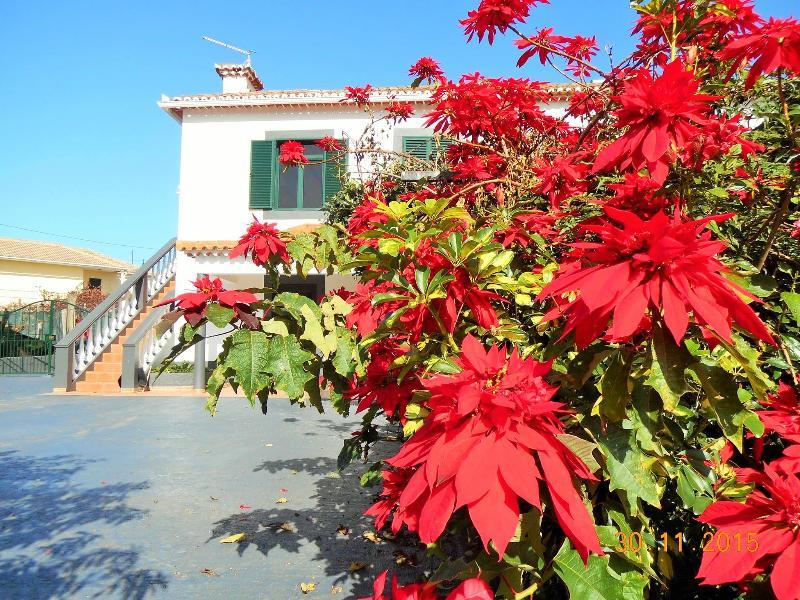 Beautiful appartement in Santana, Madeira, holiday rental in Santana