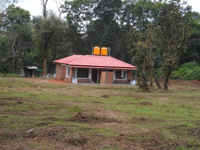 The cottage is surrounded with greenery.We have planted another 300 trees and several plants.
