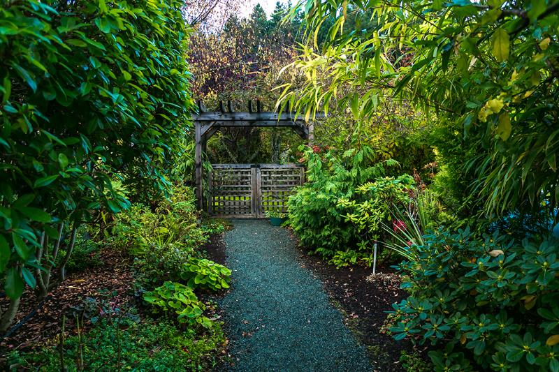 A walk through the Arbour to more gardens, Pond and Waterfall.
