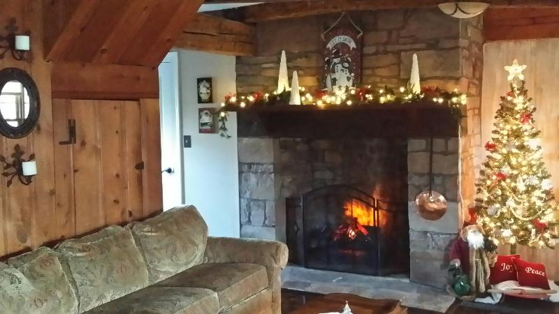 Cozy remote fireplace with optional heat.