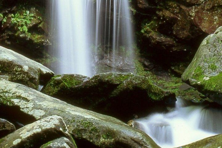 Water Fall - Beauty on a Smoky Mountain Vacation