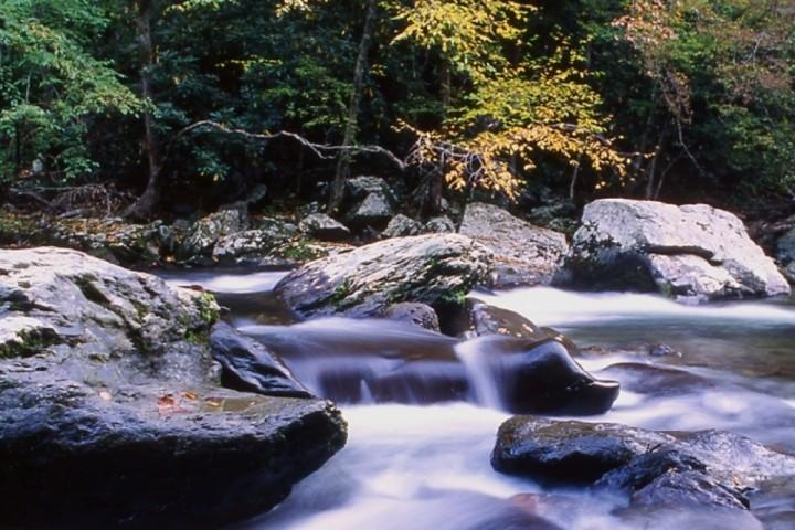Smoky Mountain vacation rentals are waiting for you!