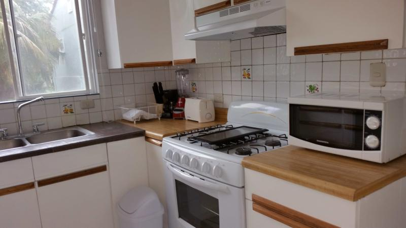 Full Kitchen with Stove, Oven and Microwave