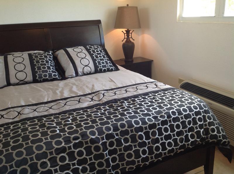 Second bedroom has queen size bed.