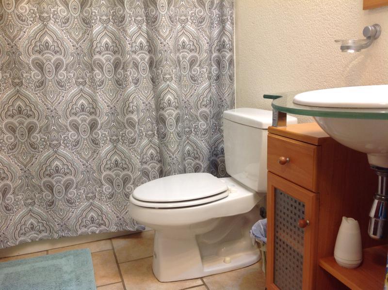 Hallway bathroom.  Tub/shower