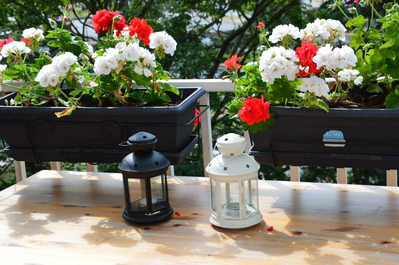 Flowers & Table for 4 on the Balcony / Table 4pers with the flowers on the balcony