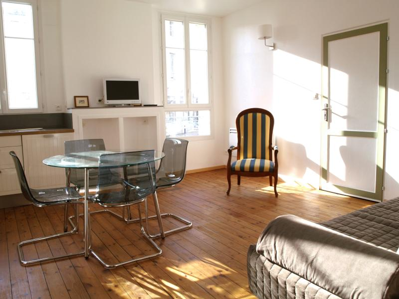 Luxury furnished apartment in the city center of Libourne