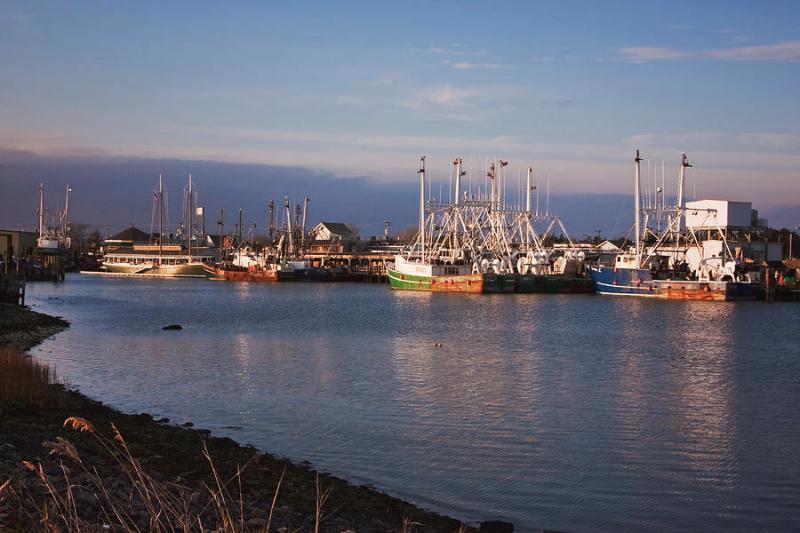 Cape May Fishing Wharf
