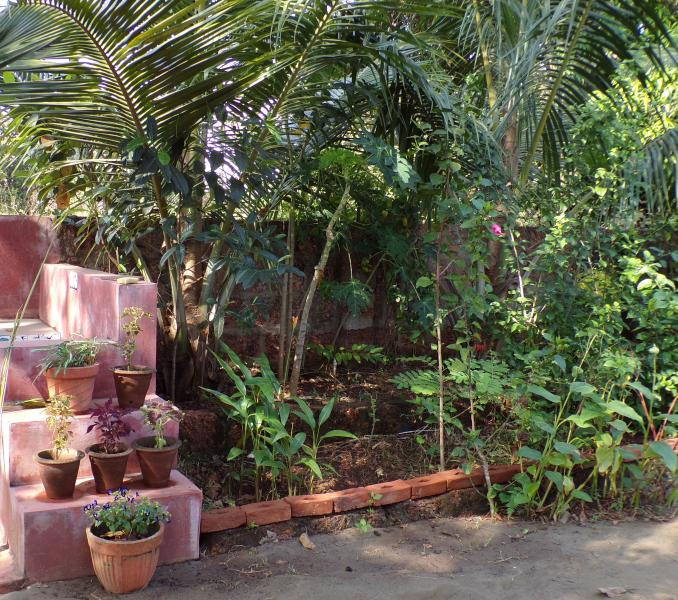 Flores tropicales y árboles frutales.